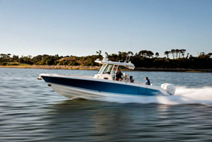 Boston Whaler Kempers